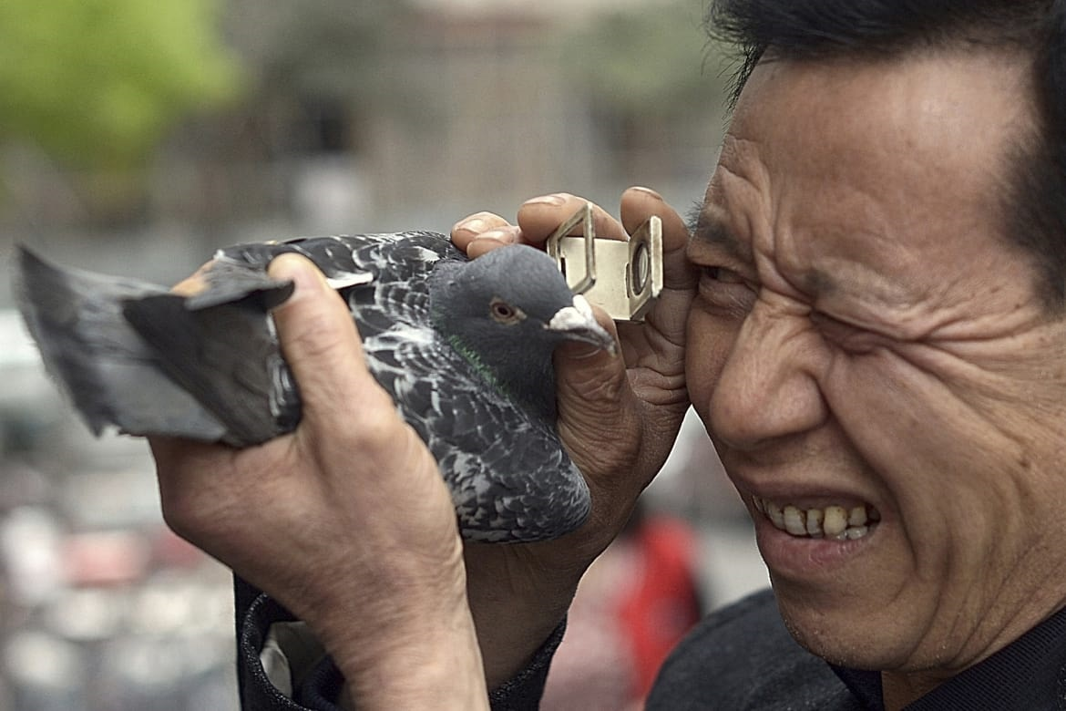 Travelers Share Their Shocking Experiences Traveling In China