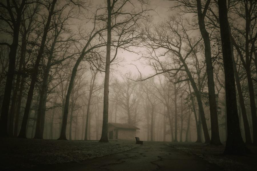 People From Around The World Share Their Bone-Chilling Urban Legends