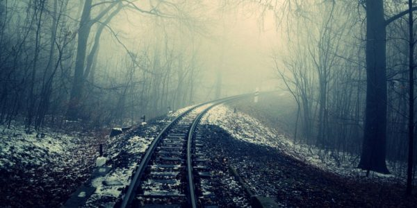 Train Conductors Share The Strangest Things They've Seen On The Railroad