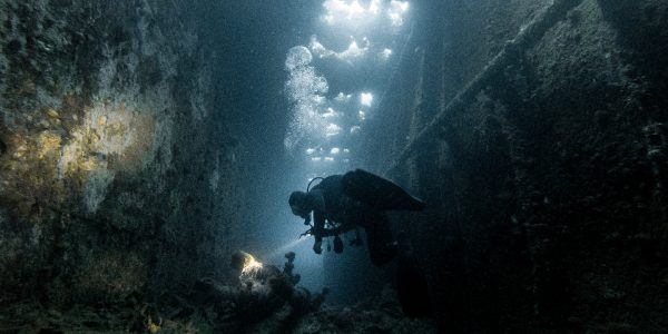 Divers From Around The World Share Tales From The Deep
