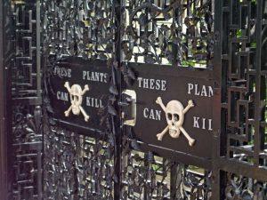 poison garden gate alnwick castle
