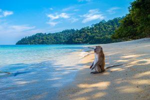 The Most Remote Beaches In The World
