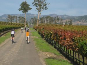 The Best Things To Do In Napa Valley, California