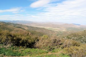 Laguna Mountains on the Pacific Crest Trail