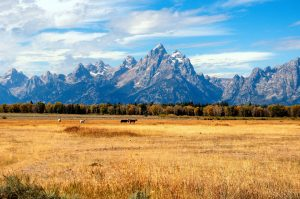 Jackson Hole: Celebrities' Favorite Travel Destinations