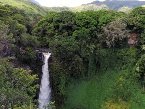 Maui: Celebrities Favorite Travel Destinations
