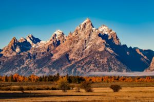 Time For A Drive To The 5 Most Beautiful National Parks In The U.S.